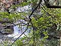 蚋仔溪 Ruizi Creek - panoramio (5).jpg