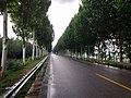 雨天拍摄的331省道.jpg