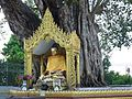 005 Bodhi Tree Shrine (8976488696).jpg