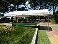 05704jfMidyear Orchid Plants Shows Quezon Cityfvf 24.JPG