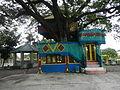 07359jfBagumbayan Roads Municipal Park Halls Victoria Llanera Nueva Ecijafvf 28.JPG