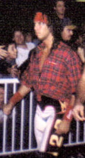 Professional wrestling match types - In keeping with the theme, the wrestlers outside the ring may wear flannel shirts during lumberjack matches; an example of this is the 1–2–3 Kid in 1995.