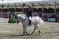 13-04-21-Horses-and-Dreams-Mikhail-Safronov (11 von 12).jpg