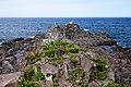 130726 Cape Peshi in Rishiri Island Hokkaido Japan06n.jpg