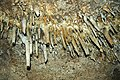 140 Broken stalactites 5 (8317609478).jpg