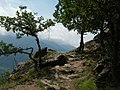2008 0707 80670 Hiking in South Tyrol Naturns R0633.jpg