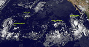 2009 Pacific hurricane season - A series of tropical cyclones on August 12. From left to right the systems are Tropical Depression Maka, the remnants of Hurricane Felicia, Tropical Depression Nine-E and the low that would later become Hurricane Guillermo
