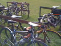 20110312 Audax Bikes.png