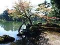 20131007 05 Kanazawa - Kenroku-en Garden (10477204916).jpg