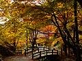 2014-11-24 Sekiganji 石龕寺 DSCF4753.jpg