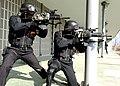 2014.12.1. 해병대 제1사단 - 특경대훈련 1st Dec., 2014, Special Guarding Training of ROK 1st Marine Div. (15742820240).jpg