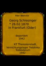 2014.Georg Schlesinger