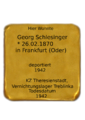 2014.Georg Schlesinger.png