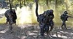 2015.9.19.해병대2사단-한미 해병 합동훈련 - 16th Sep. 2015. ROK 2nd Marine Division - ROKMC & USMC joint trainning (21398167933).jpg