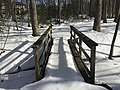 2016-01-31 14 03 14 A snow-covered trail crossing a tributary of Hosepen Run on a snowy footbridge in a snowy woodland eight days after the Blizzard of 2016 in the Franklin Farm section of Oak Hill, Fairfax County, Virginia.jpg