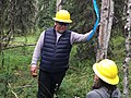2017. Bruce Moltzan, Forest Pathologist with Forest Health Protection in the Washington Office. Kenai Peninsula, Alaska. (36898634532).jpg