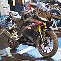 2019 Yamaha YZF-R15.jpg