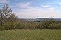 20210417 Naturschutzgebiet Wolferskopf 08.jpg