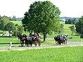 21te Rammenauer Schlossrundfahrt der Pferdegespanne (011).jpg
