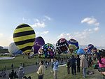 22nd FAI World Hot Air Balloon Championship 20161103-25.jpg