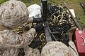 26 MEU and MASS-1 participate in live fire exercise 150827-M-WP334-140.jpg