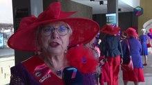 66a854f6706 ... Red Hat Society. Bestand 360 rode Marikens melden zich in Nijmegen.webm
