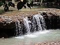 555594032 Hokutolite Nature Reserve JimX 3420.jpg
