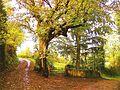 63700 Montaigut, France - panoramio (26).jpg