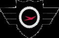 7407th Support Squadron- Emblem.png