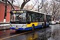 9224179 at Xibanqiao (20200106111613).jpg