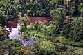AERIAL CREEK RAINFOREST SIPALIWINI SURINAM AMAZONE SOUTH-AMERICA (32202866643).jpg