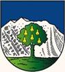 AUT Wals-Siezenheim COA.png