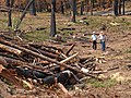 A Interdisciplinary BAER team responding to a burned area (39750600432).jpg