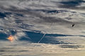 A U.S. Coast Guard HH-65C Dolphin rescue helicopter assigned to Coast Guard Air Station Atlantic City flies near a circumhorizontal arc, an atmospheric phenomenon sometimes called a fire rainbow, Nov. 6, 2013 131106-Z-NI803-288.jpg