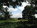 A clear shot - geograph.org.uk - 544251.jpg