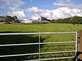 A field with grazing cows - geograph.org.uk - 2004158.jpg