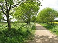 A sunny day in early May - geograph.org.uk - 1293372.jpg