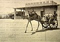 AbLeServiceDesEauxDjibouti,AbyssinieVers1900.jpg