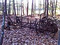 Abandoned manure spreader, McLean Game Refuge, 2010 b.jpg