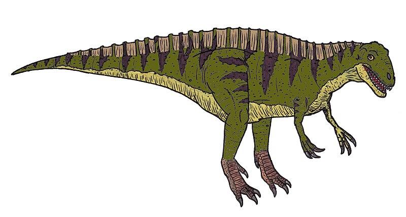 File:Acrocanthosaurus 9583.JPG