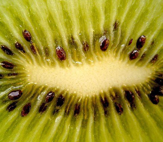 Semená v plode kiwi