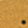 Active region in the low photosphere - Fe I 5434 Å.png