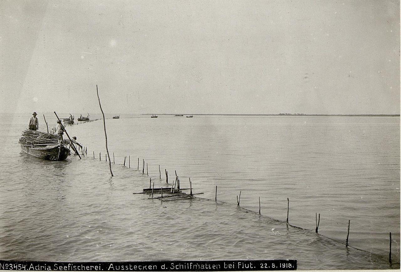 File Adria Seefischerei Ausstecken Der Schilfmatten Bei Flut