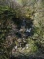 Afon Conwy - geograph.org.uk - 1373204.jpg