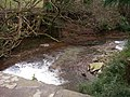 Afon Gafenni from Ross Road - geograph.org.uk - 361214.jpg