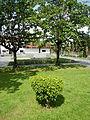 AguinaldoShrinejf0944 11.JPG