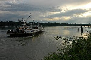 Albion Ferry - Wikipedia, the free encyclopedia
