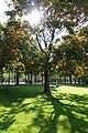 Allée Marcel Proust @ Jardin des Champs Elysée @ Paris (33517611584).jpg