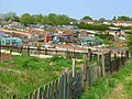 Allotments at Stillington - geograph.org.uk - 167540.jpg