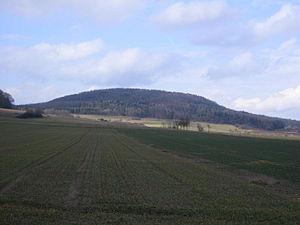 Altenburg bei Niedenstein